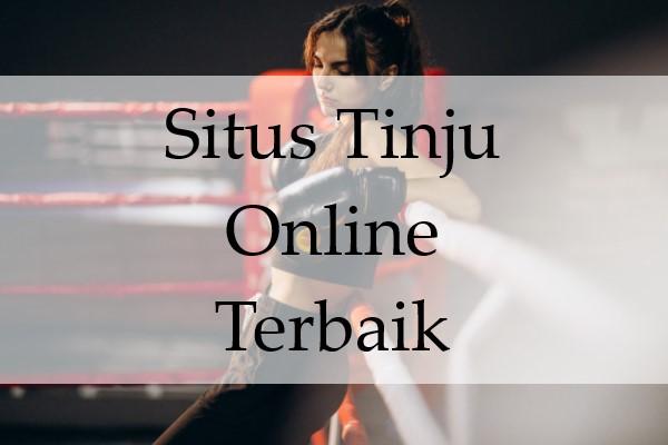 Situs Tinju Online Terbaik Sekarang Semakin Terlihat Ciri Aslinya